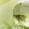 Greener than ever: IBEC launches its sustainability strategy